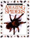 Amazing Spiders