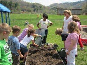 CVS gardening Christin Wilson 24