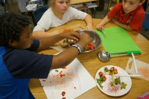 Haw Creek Strawberry Salsa (2)