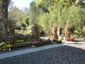 Bald Creek garden