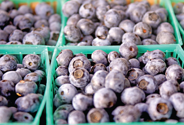 Berries are the Get Local food for July