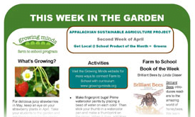this week in the garden monthly newsletter templates growing minds